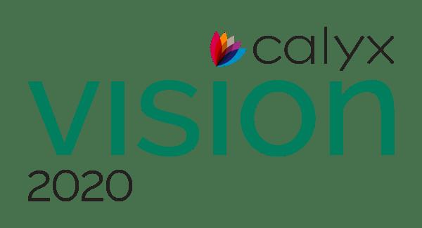 Vision 2020